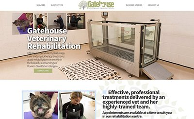 Cammy Graphic DesignGatehouse Vet physio website